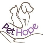 Sterilizare gratuita pentru caini si pisici in Timisoara